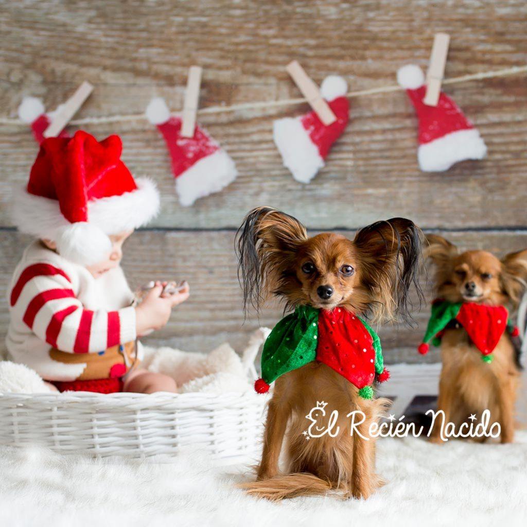 mini sesion de fotos de navidad